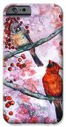 Cardinals  iPhone Case by Zaira Dzhaubaeva