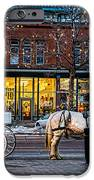Carriage Ride iPhone Case by Baywest Imaging
