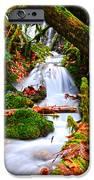 cascade creek iPhone Case by Randy Giesbrecht