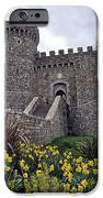 Castello di Amorosa Winery iPhone Case by Gina Savage