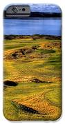 Chambers Bay Lone Tree iPhone Case by David Patterson