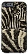 Comfort iPhone Case by Andrew Paranavitana
