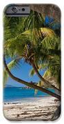 Cooper Island iPhone Case by Adam Romanowicz