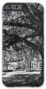 Cornell College Landscape iPhone Case by University Icons