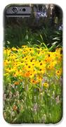 Countryside Cottage Garden 5D24560 iPhone Case by Wingsdomain Art and Photography