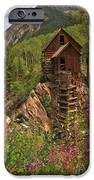 Crystal Mill Wildflowers iPhone Case by Adam Jewell