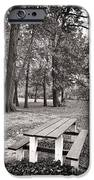 Day at the Park iPhone Case by John Rizzuto