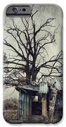 Decay Barn iPhone Case by Svetlana Sewell