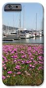 Docks at Sausalito California 5D22695 iPhone Case by Wingsdomain Art and Photography