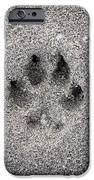 Dog paw print in sand iPhone Case by Elena Elisseeva