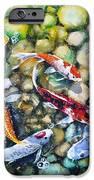 Eight Koi Fish Playing with Bubbles iPhone Case by Zaira Dzhaubaeva