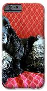 English Cocker Spaniel on Red Sofa iPhone Case by Catherine Sherman