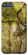 Fabulous Spanish Moss iPhone Case by Christine Till