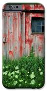 Fade to Gray iPhone Case by Thomas Schoeller