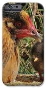 Family iPhone Case by Karin Pinkham