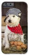 Farmer Dog iPhone Case by Edward Fielding