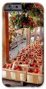 Farmstand iPhone Case by Janice Drew