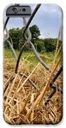 Field of Dreams iPhone Case by Jason Politte
