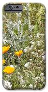Field of Flowers iPhone Case by Artist and Photographer Laura Wrede