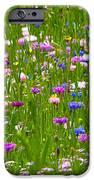 Field Of Flowers iPhone Case by Leyla Ismet