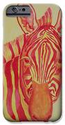 Flame iPhone Case by Rhonda Leonard