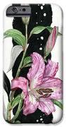 Flower Lily 02 Elena Yakubovich iPhone Case by Elena Yakubovich