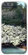Flowers and Pool iPhone Case by Terry Reynoldson