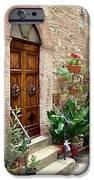 Front Door iPhone Case by Ellen Henneke