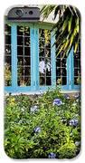 Garden Window DB iPhone Case by Rich Franco