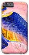 Geometric Shell Art iPhone Case by Deborah Benoit