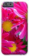 Hot Pink iPhone Case by Julie Palencia