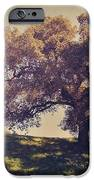 I Wish You Had Meant It iPhone Case by Laurie Search