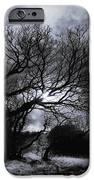 Ichabod's Pathway iPhone Case by Donna Blackhall