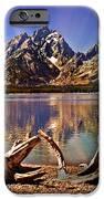 Jackson Lake Mt. Moran iPhone Case by Marty Koch