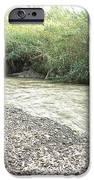 Jordan River After the Rains iPhone Case by Rita Adams