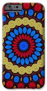 Kaleidoscope of Colorful Embroidery iPhone Case by Amy Cicconi