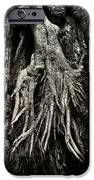 Kneeling at the Feet of the Green Man iPhone Case by Rebecca Sherman