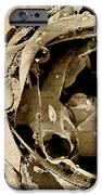 Life VI iPhone Case by Yanni Theodorou