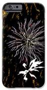 Lighting Up The Sky iPhone Case by Aimee L Maher Photography and Art