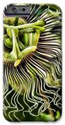 mad passion iPhone Case by Peggy J Hughes