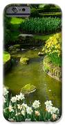 Meandering Stream in Spring Flower Garden Keukenhof near Lisse Netherlands iPhone Case by Robert Ford
