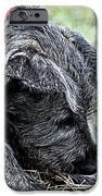 MiniMurph iPhone Case by Ann Butler
