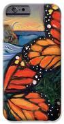 Monarch Butterflies at Natural Bridges iPhone Case by Jen Norton
