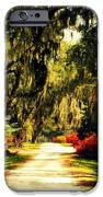 Moss on the Trees at Monks Corner in Charleston iPhone Case by Susanne Van Hulst