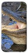 Mouth In The Middle iPhone Case by Adam Jewell