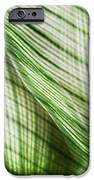Nature Leaves Abstract in Green iPhone Case by Natalie Kinnear