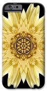 Pale Yellow Gerbera Daisy I Flower Mandala iPhone Case by David J Bookbinder