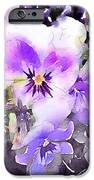 Pansies Watercolor iPhone Case by John Edwards