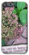 Paths of the Lord iPhone Case by Larry Bishop