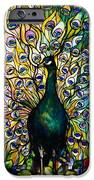 Peacock iPhone Case by American School